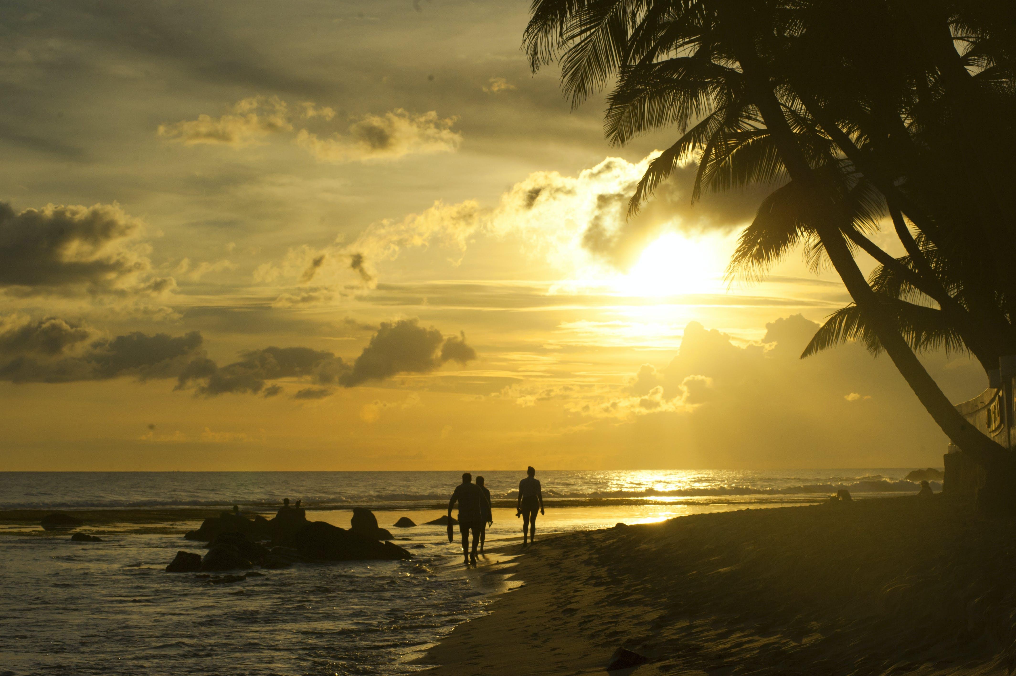 Silhouette of Three Person Walking on Seashore