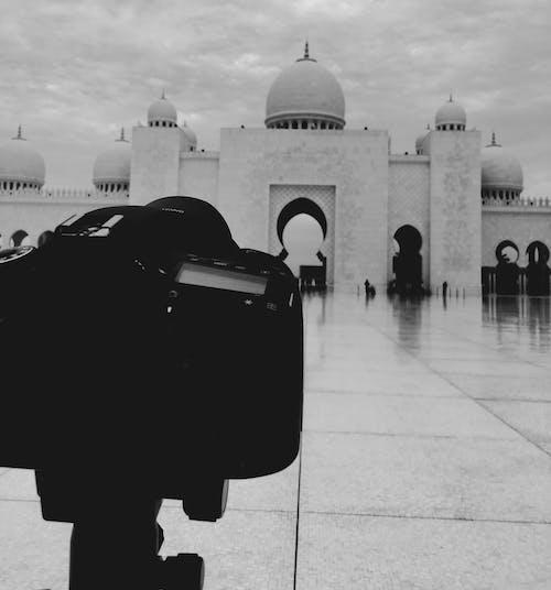 Kostnadsfri bild av ingång, kamera, moské, svartvitt