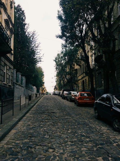 #arabalar, #sokak, #walk, #yol içeren Ücretsiz stok fotoğraf