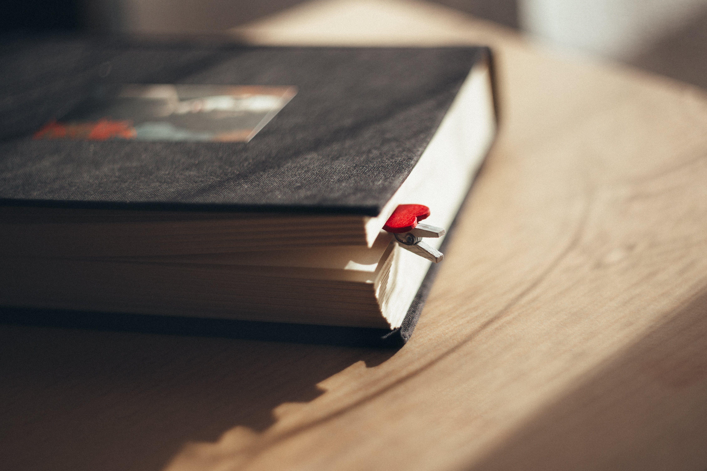 Základová fotografie zdarma na téma číst, dřevo, kapitola, klasický