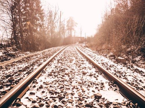 下雪的, 交通系統, 光, 冬季 的 免费素材照片