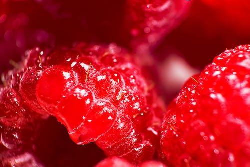 アシェネ, いちご, イチゴジャム, ショートケーキの無料の写真素材