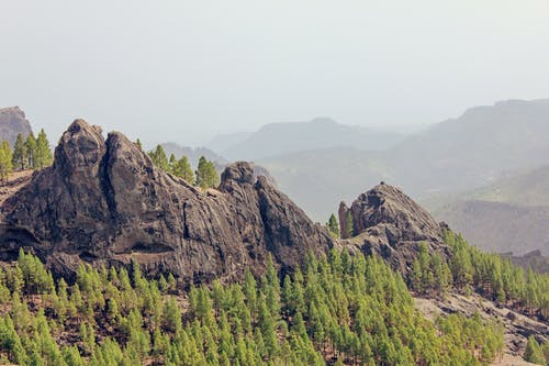 Rock Formations Surrounded With Trees