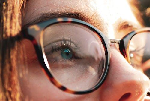 คลังภาพถ่ายฟรี ของ การถ่ายภาพมาโคร, ดำ, ตาสีฟ้า, ผมสีน้ำตาล
