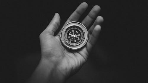 Бесплатное стоковое фото с заблудившийся, исследование, компас, пальма