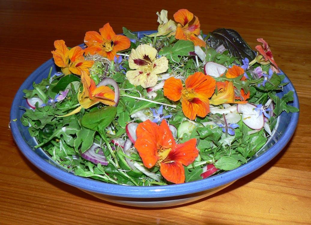 Free stock photo of Nasturtium salad