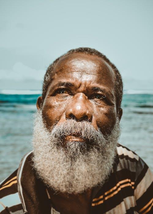 Základová fotografie zdarma na téma černoch, chloupky na obličeji, dospělý, kůže