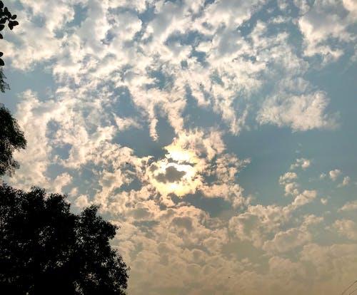 Photos gratuites de après-midi, beau ciel, beau coucher de soleil, ciel bleu