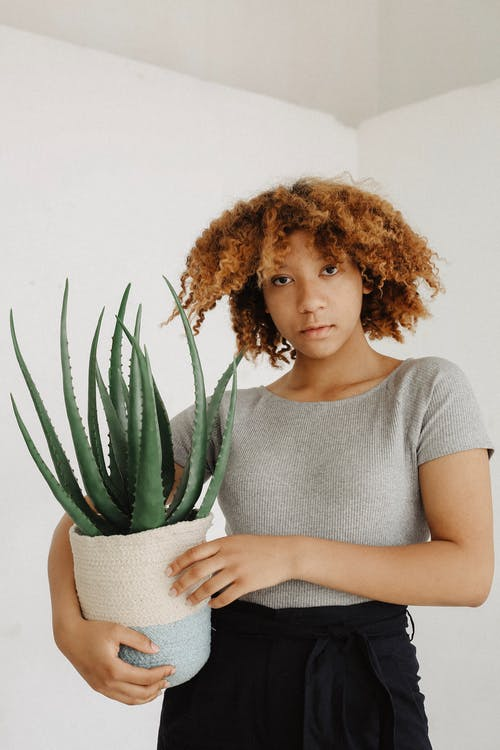 Woman Holding Potted Aloe Vera Plant