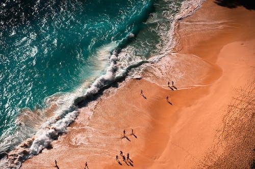 Foto profissional grátis de ao ar livre, areia, beira-mar, corpo d'água