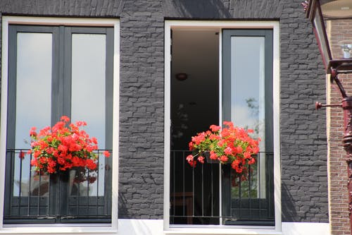 Free stock photo of beautiful flowers, red, window box