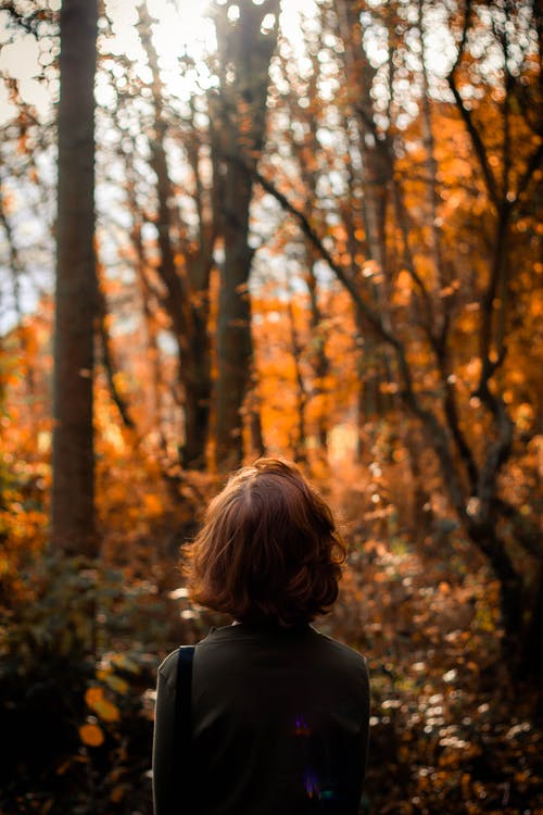 Woman Standing Under Trees in the Forest