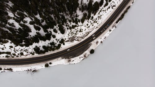 Foto profissional grátis de aerofotografia, ao ar livre, árvores, automóveis
