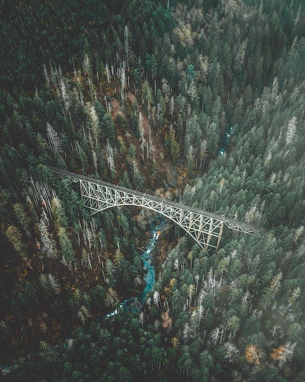 arkitektur, bro, dagslys