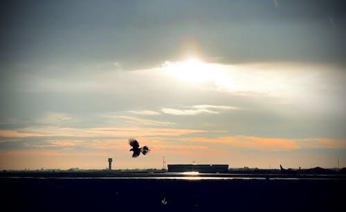 Immagine gratuita di aeroporto, bel cielo, cloud, dopo la pioggia