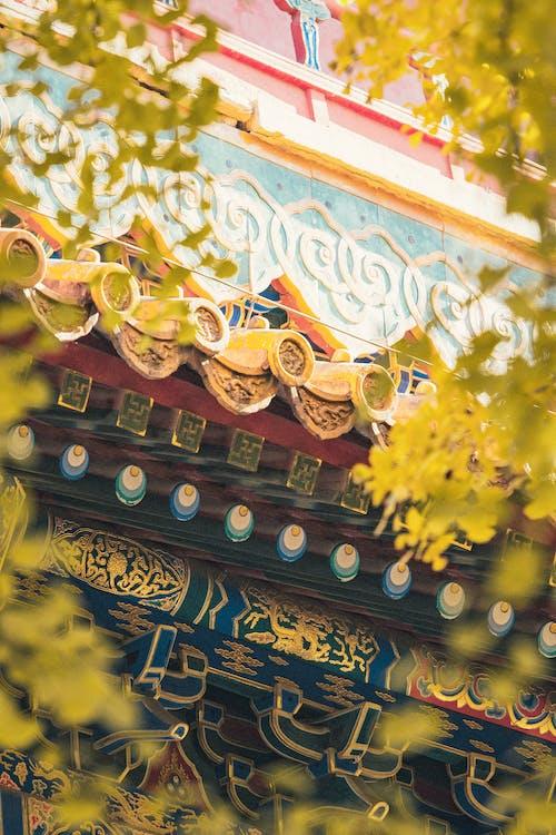 Základová fotografie zdarma na téma 北京, 历史, 季节, 建筑