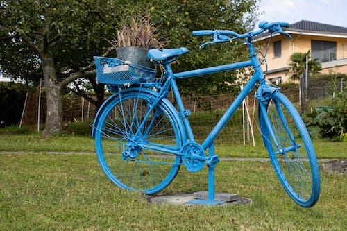 Ingyenes stockfotó design, fényképészet, formálás, hegyi kerékpár témában
