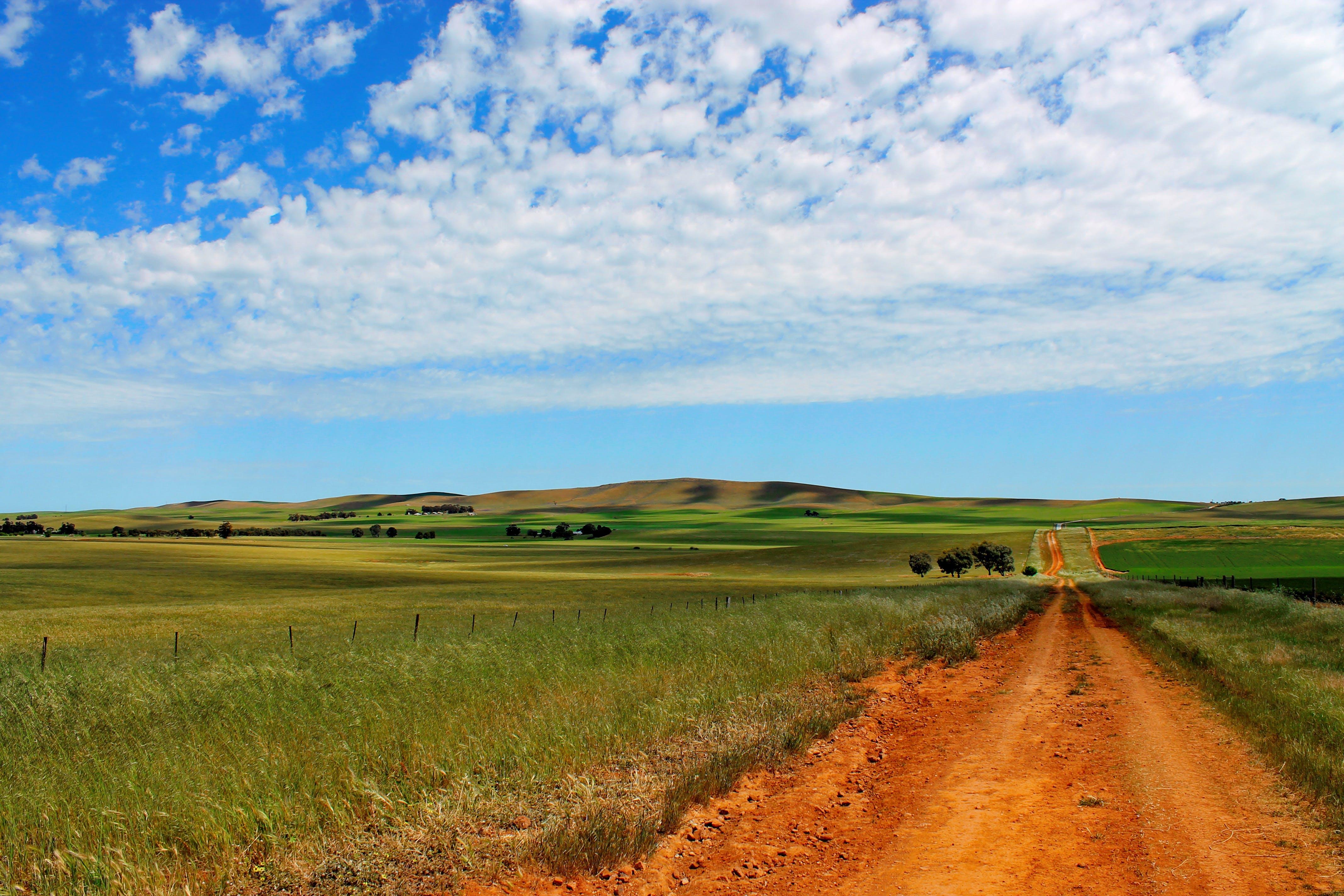 Free stock photo of sky, field, australia, farm