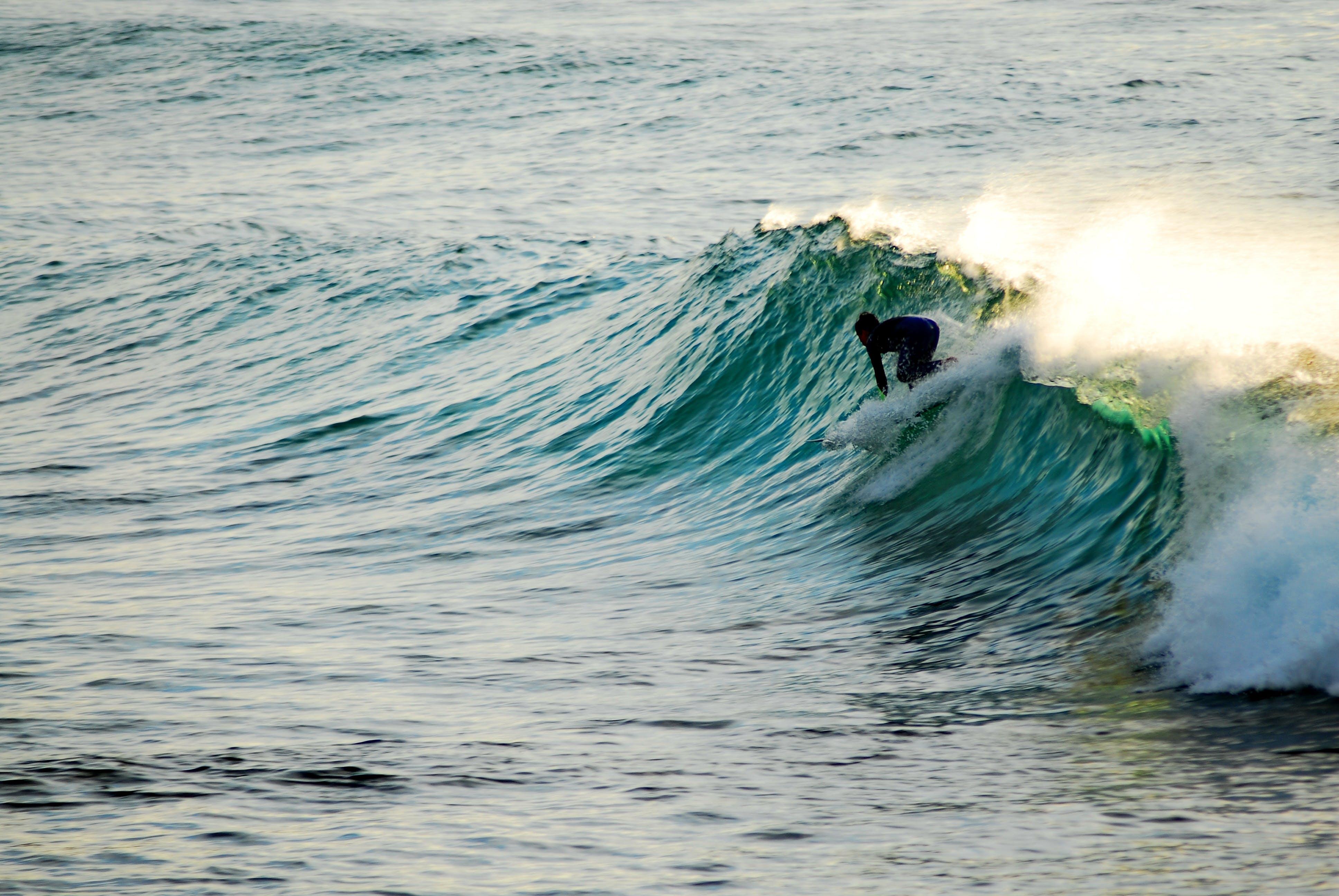 Free stock photo of australia, beach, break, Bronte