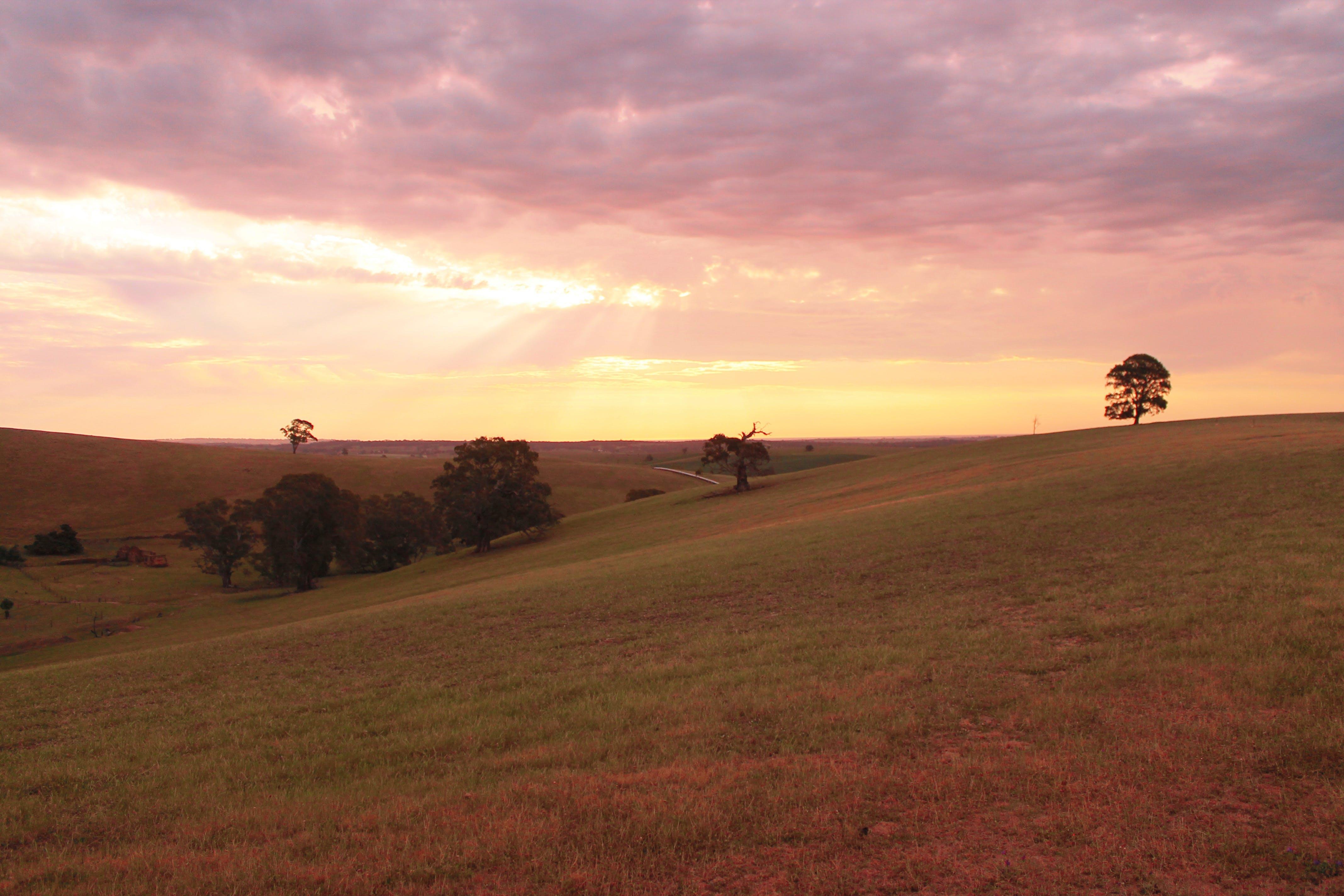 Free stock photo of sunset, australia, valley, South Australia