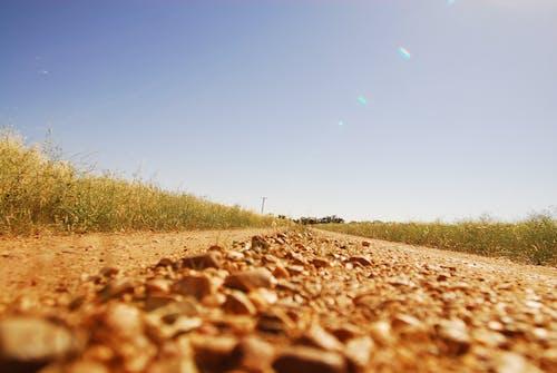 Fotobanka sbezplatnými fotkami na tému Austrália, cesta, dubbo