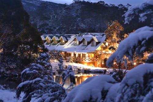Fotobanka sbezplatnými fotkami na tému Austrália, cradle mountain lodge, sneh