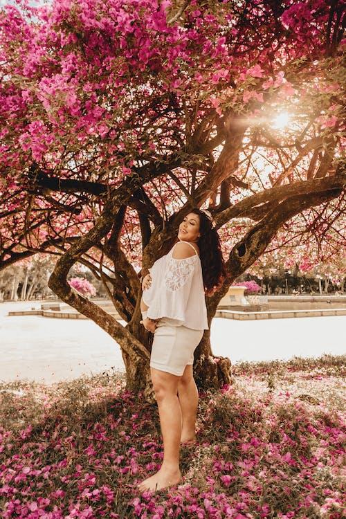Imagine de stoc gratuită din anotimp, arbore, femeie, floră