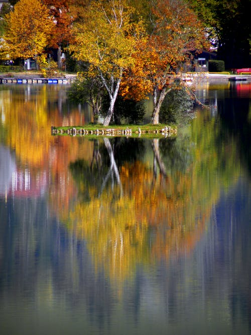 Immagine gratuita di autunno, colori autunnali, colori d'autunno, isola