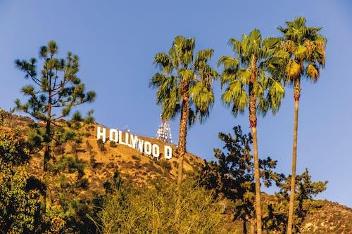 Free stock photo of california, hollywood, los angeles, unites states