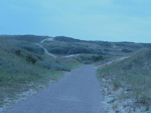 Ảnh lưu trữ miễn phí về cồn cát, con đường, màu xanh lá