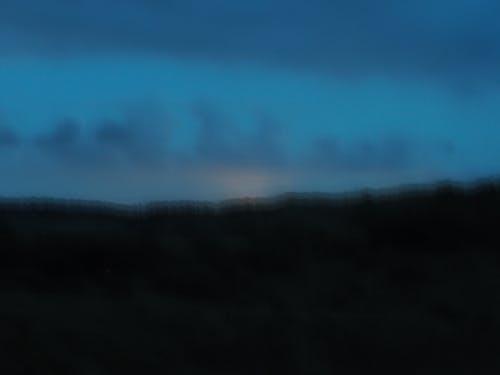 Free stock photo of blur, sky, trees