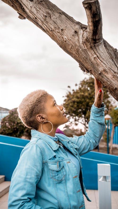 Immagine gratuita di albero nudo, ambientalisti, bellissimo, donna di 20-25 anni