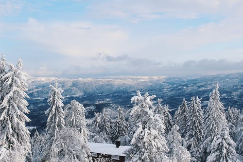 コールド, シーズン, ハイアングルショット, 冬の無料の写真素材