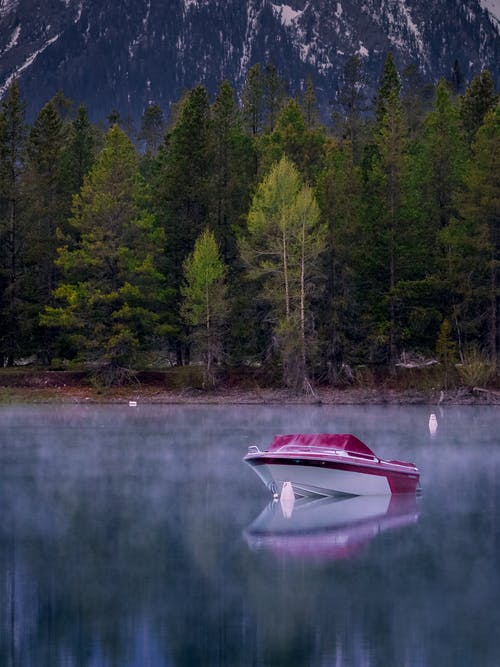 Boat on Calm Body of Water Near Trees