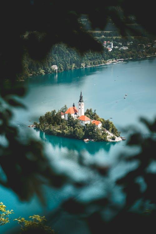 Immagine gratuita di acqua, alberi, avventura, azzurro