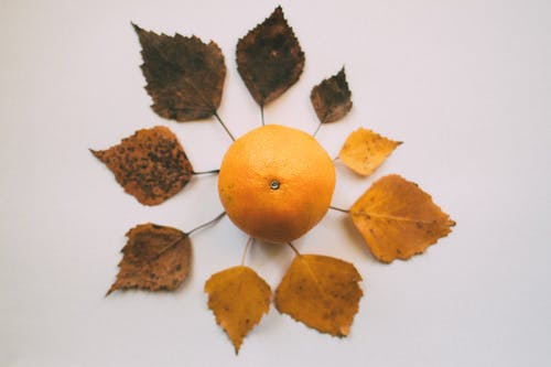 Orange Fruit Surrounded With Leaves