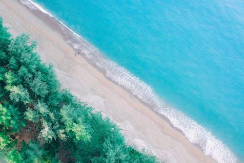 คลังภาพถ่ายฟรี ของ งดงาม, ชายหาด, ทราย, ทะเล
