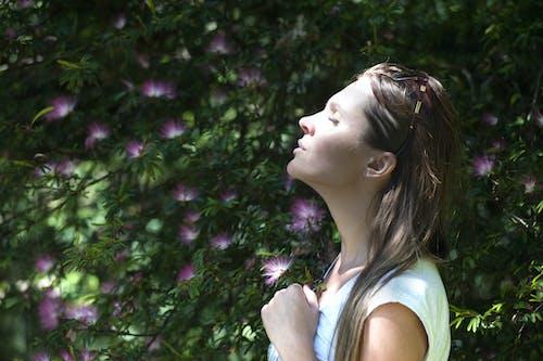 Kostnadsfri bild av andas, andetag, avslappning, blommor