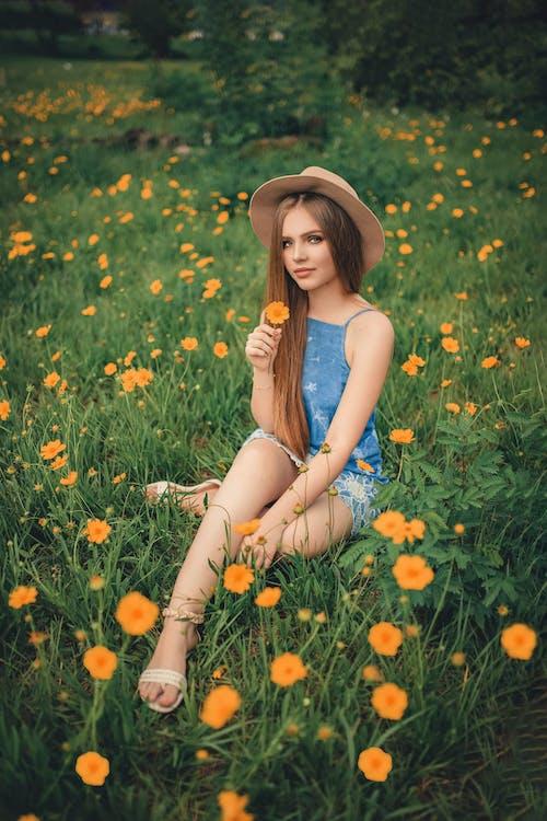 Kostnadsfri bild av avslappning, blommor, dagsljus, fält