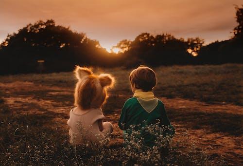 Бесплатное стоковое фото с вечер, восход, дети, закат