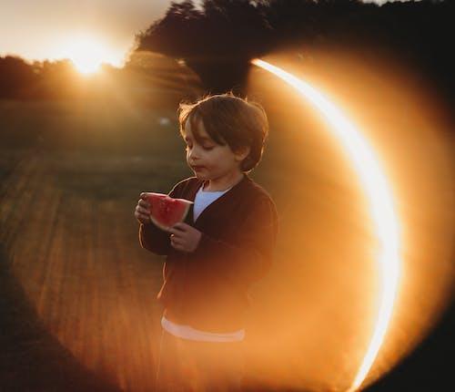 Základová fotografie zdarma na téma chlapec, dítě, goldenhour, jídlo