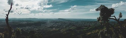 Fotos de stock gratuitas de arboles, campo verde, ladera de la montaña, montaña