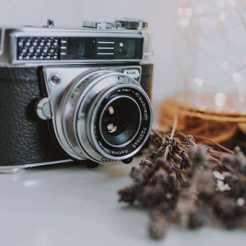 Immagine gratuita di attrezzatura, concentrarsi, dispositivo, fotocamera