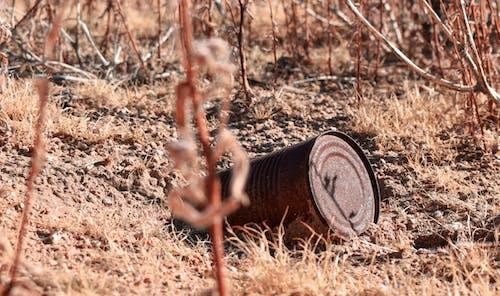 土, 地面, 污染, 環境 的 免费素材照片