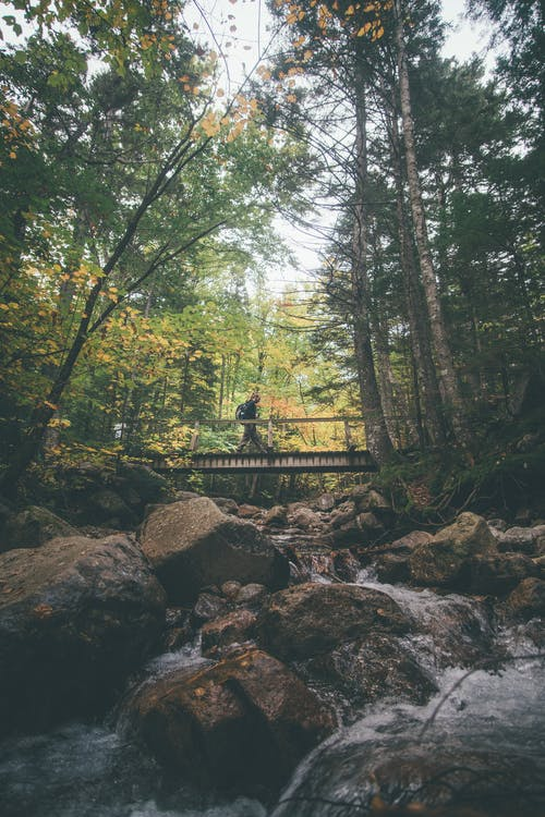 Person Walking on Bridge and Waterfalls Scenery