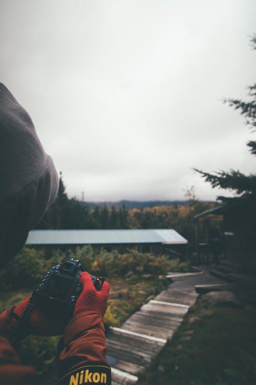 Základová fotografie zdarma na téma fotoaparát, les, most, náladový