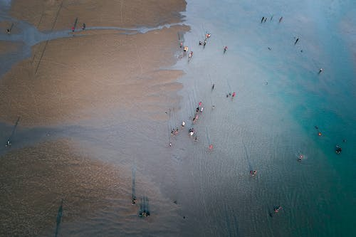คลังภาพถ่ายฟรี ของ การพักผ่อนหย่อนใจ, คน, ชายทะเล