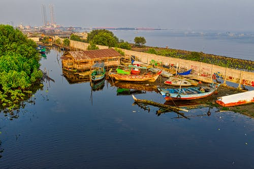 Foto profissional grátis de ao ar livre, árvores, barco de pesca, barcos