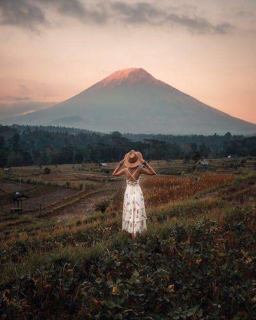 Бесплатное стоковое фото с вид сзади, восход, гора, женщина