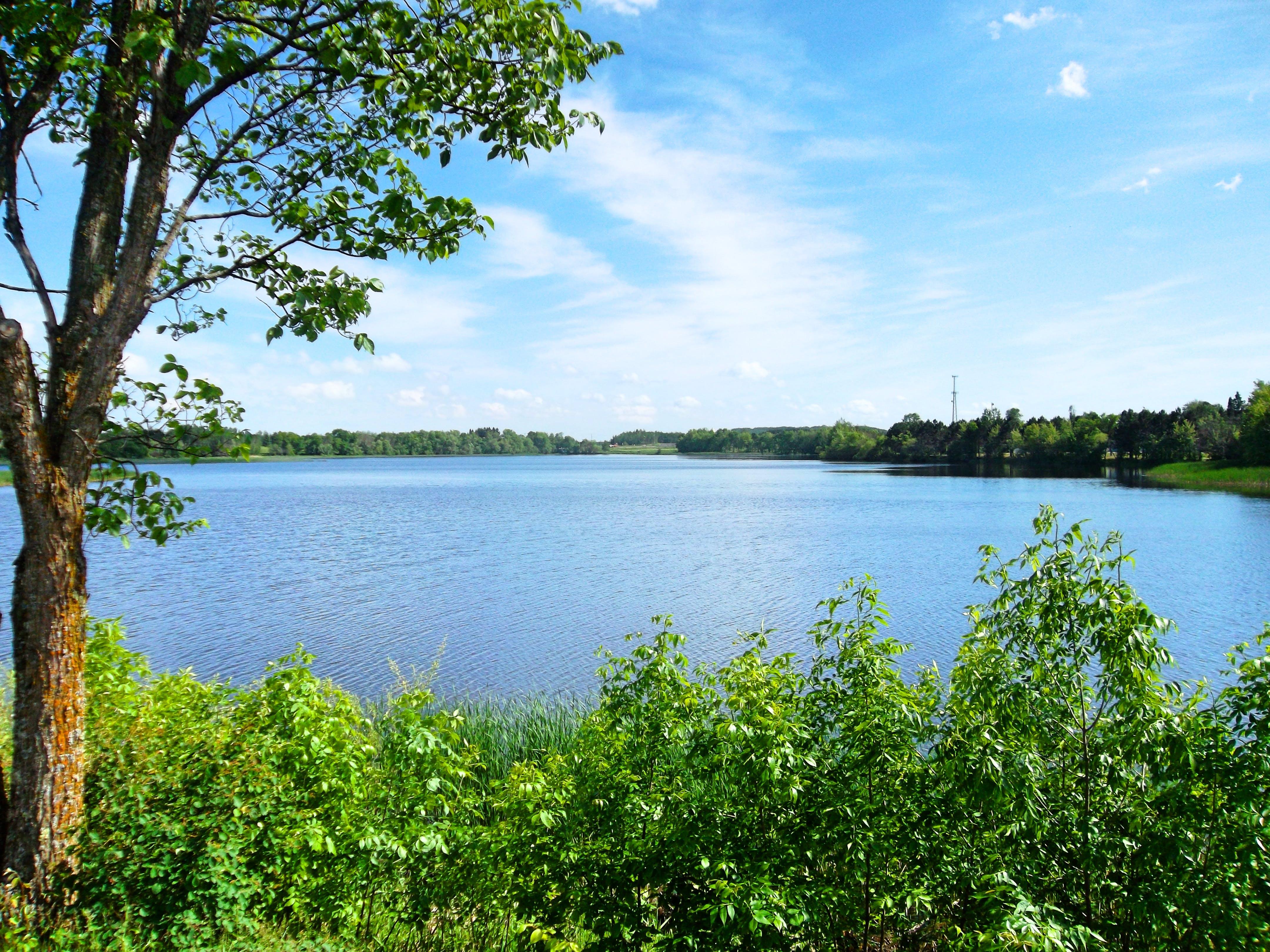 Free stock photo of beautiful, blue, green, nature